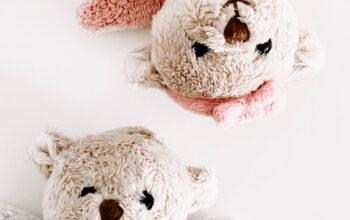 Teddy-CIS
